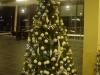 christmas-themed-event-coordinator-cork-15