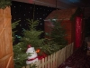 christmas-themed-event-coordinator-cork-8