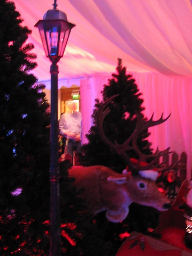 christmas-themed-event-manager-cork-18