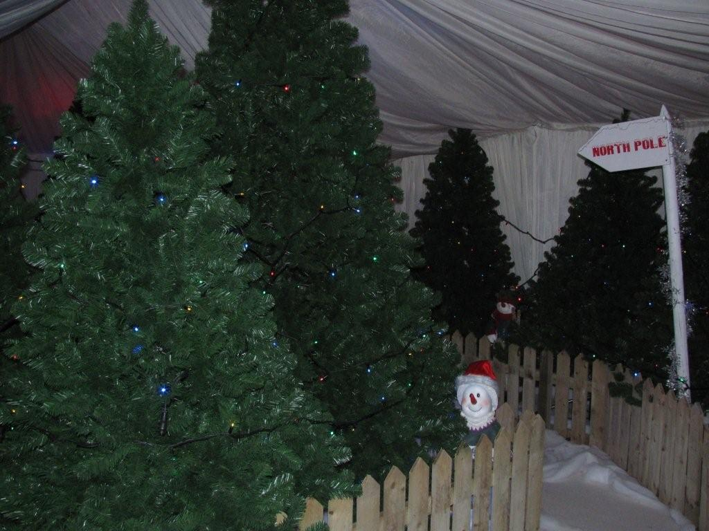 christmas-themed-event-manager-cork-23